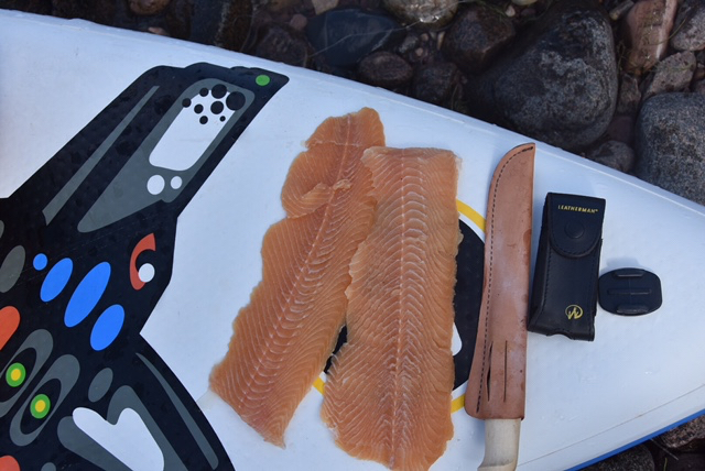 Lake Trout shore lunch